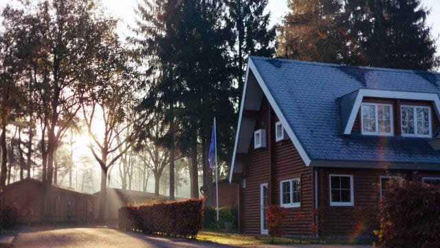 House with sun shining through tall trees
